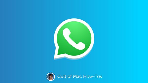 How to make WhatsApp voice and video calls on Mac