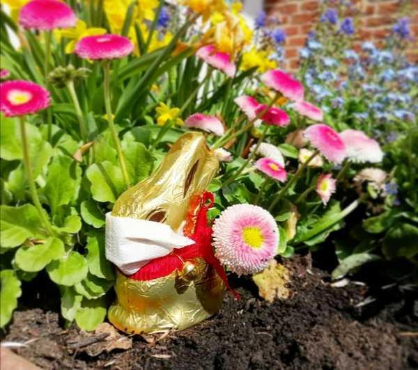 Leserin Sarina Behling hat ihren Humor beim Dekorieren zu Ostern trotz der Corona-Krise nicht verloren.