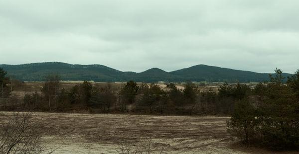 Die etwas enttäuschende Aussicht von der Augustdorfer Dünenfeld Aussichtsplattform