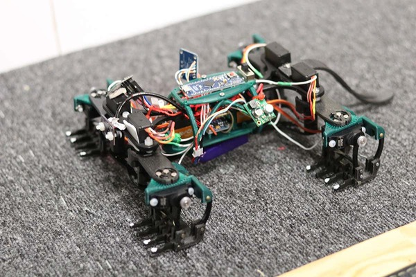 Robot lizard can quickly climb a wall just like the real things