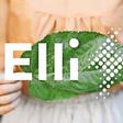 """""""Elli"""" gehört jetzt zur VW-Komponente"""