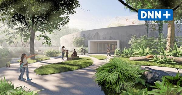 Neues Orang-Utan-Haus im Zoo: Stadtrat soll grünes Licht für Bürgschaft geben