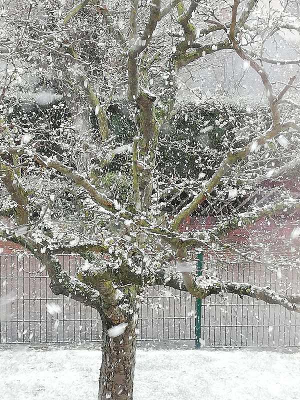 Der April ist für seine Wetterkapriolen bekannt. Dieser winterlich anmutende Schnappschuss gelang Heike Holstein vergangene Woche in Bad Nenndorf.