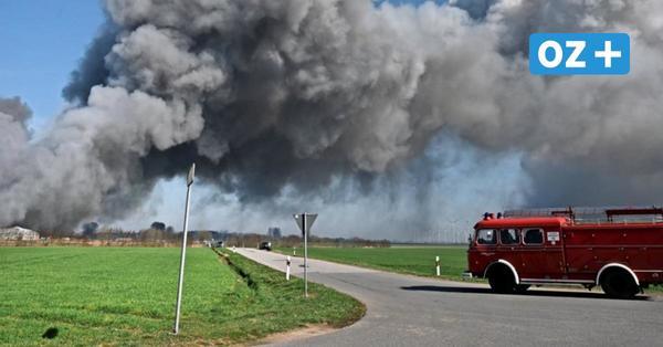 Nach Brand in Schweinezucht in Alt Tellin: Verdacht auf fahrlässige Brandstiftung