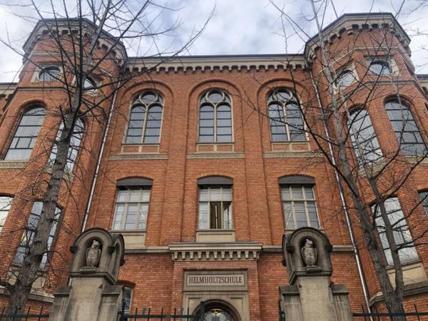 Die Eulen markieren den Eingang zum Helmholtz-Gymnasium. Foto: Peter Degener