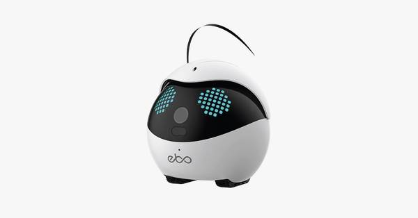 Enabot Ebo Pro Review: A Wobbly Robotic Toy for Your Cat