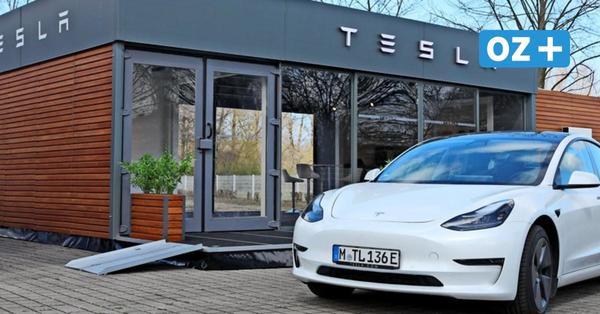 Neuer Store in Rostock: Welche Rolle Tesla in MV spielt