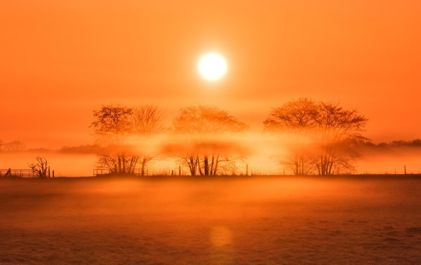 Sonnenaufgang in Prerow (Foto: Klaus Haase)
