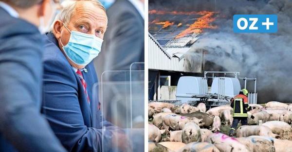 Abgebrannter Mega-Stall in AltTellin soll wieder aufgebaut werden – als Musterbetrieb