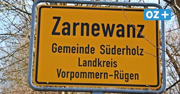 Dorfgeschichten aus Zarnewanz: Von der Ortschronistin bis zur Säulenhainbuche