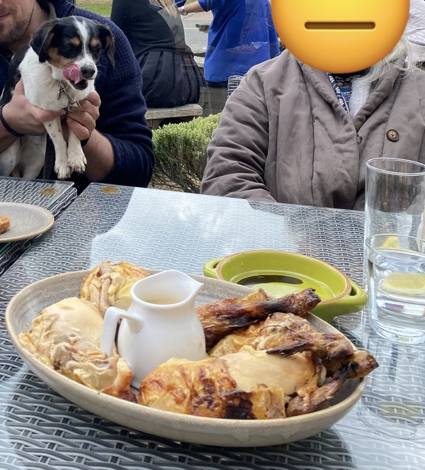 Poppy was thrilled to join us for our first post-lockdown pub lunch