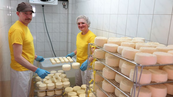 Yule Seifert und Paul Thomas bei der Käseherstellung. Foto: Jutta Abromeit