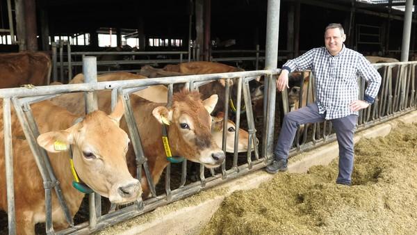 Landwirt Rainer Schmitt mit seinen 450 Jersey-Rindern. Foto: Jutta Abromeit