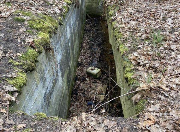 Überreste des einstigen Militärflugplatztes. (Foto: Max Braun)