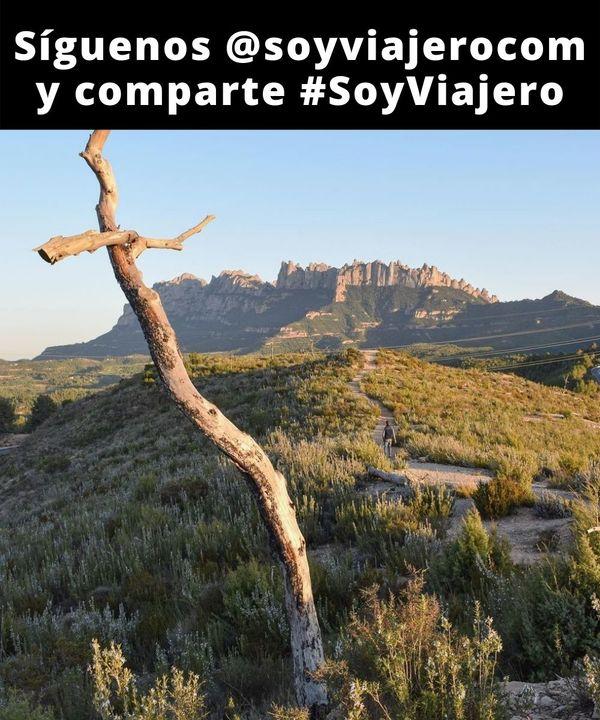 📸 : @travelleating // 📍El Bosque de las Cruces, Sant Salvador de Guardiola (Cataluña)  #soyviajero #SoyOutsider //