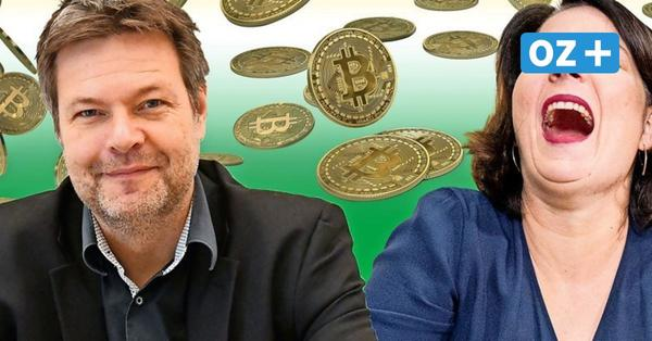 Eine Million Euro für die Grünen gespendet: Wer ist Moritz Schmidt aus Greifswald?