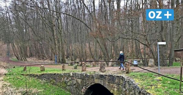 Neuburg hat einige der schönsten Wanderwege in Nordwestmecklenburg
