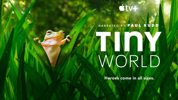 'Tiny World' is the nature doc you should be binging  [Apple TV+ review]