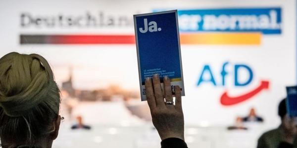 Sachsen-AfD: Zwei Fraktionsmitglieder treten aus der Partei aus