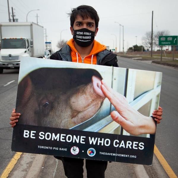 Varun Virlan, Pig Save vigil.