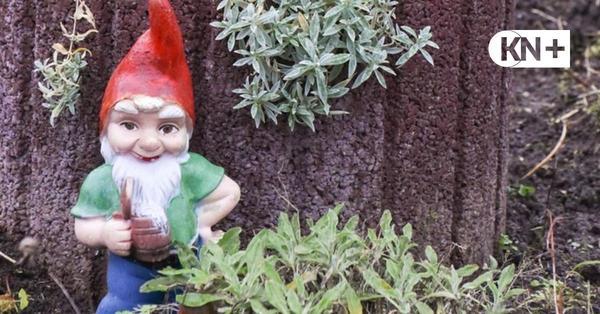 Coronafrage: Welche Regeln gelten für Kleingärtner?