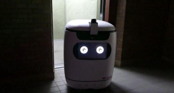 RICE Autonomous Delivery Robot