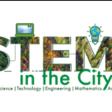 STEMintheCity - Naturalmente STEM