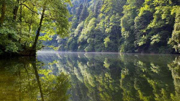 Study: rivers emit more CO2 at night than during the day