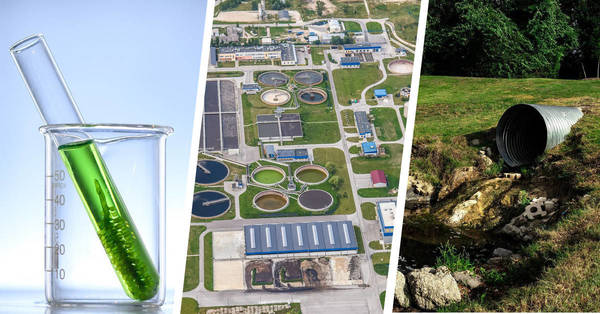 Water treatment companies turning to novel biology to cut excess nutrients