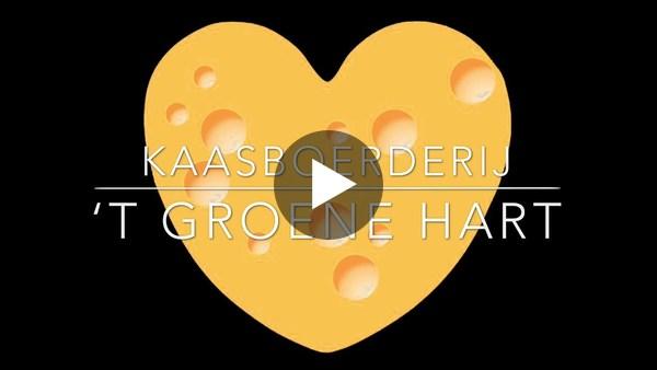 HOOGMADE - Koeiendans van de dames bij kaasboerderij 't Groene Hart (video)