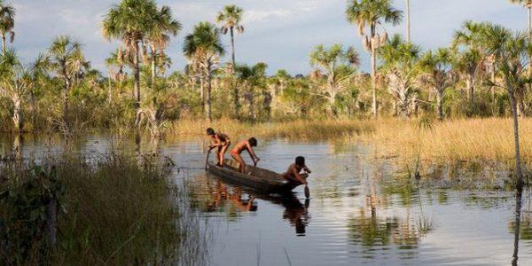 Brazil: agro-industry surrounds Xingu indigenous territory in Brazil