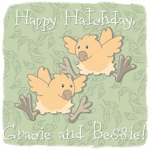 Gracie and Bessie have been practically inseparable since the day they hatched.