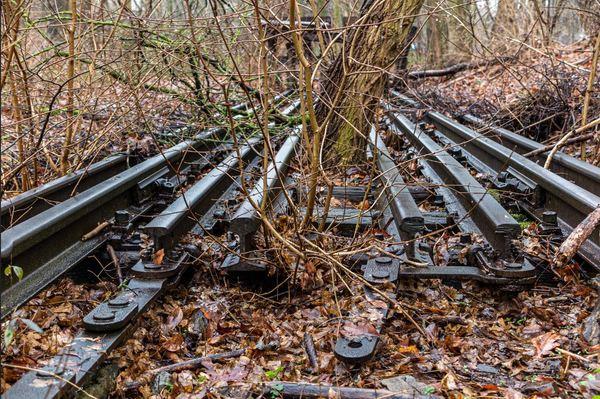 Fragmente der ehemaligen S-Bahn-Trasse von Berlin-Zehlendorf nach Potsdam. Foto: Detlev Scheerbarth