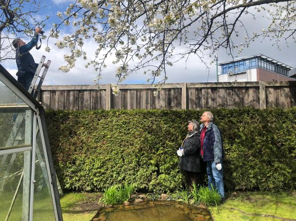 Familie Rübe in ihrem Garten. Hinter der Holzwand steht das Sterncenter. MAz-Fotograf Bernd Gartenschläger auf der Leiter kriegt beides gleichzeitig aufs Bild.Foto: Peter Degener