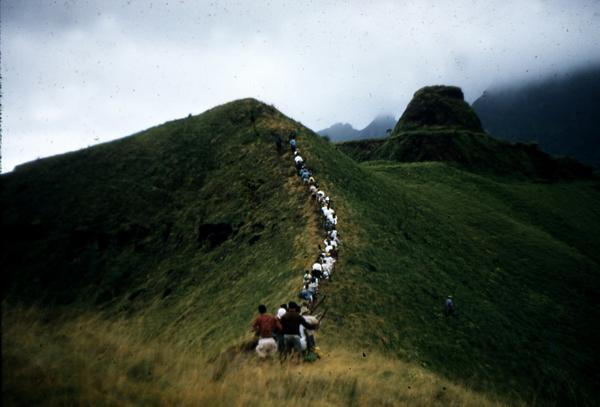 L'équipe de Thor Heyerdhal avec des habitants de Rapa se dirigent vers Morongo Uta, en 1956. (Editions Albin Michel)