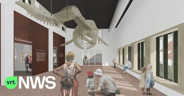 Cachalot dans le nouveau musée de Navigo à partir de 2023 - Potvis vanaf 2023 in vernieuwd Navigo-museum