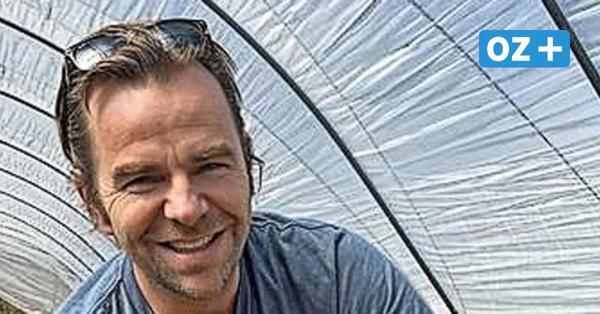 """Erdbeerbauer Robert Dahl:""""Wir hoffen, dass es am 30. April losgeht"""""""