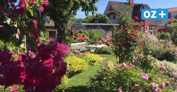 Schönster Garten in MV gesucht: Jetzt für Ihren Favoriten stimmen