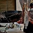 Emprendedores cubanos lanzan drones disfrazados de gavilán