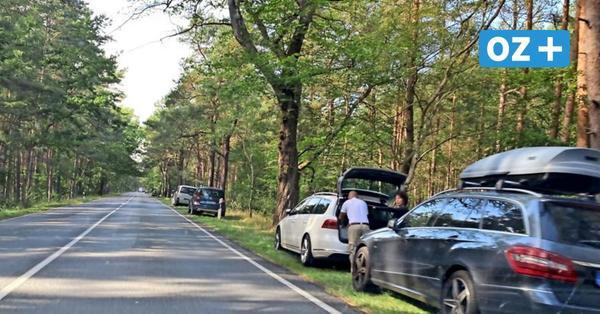 2000 Autos mitten im Wald? CDU plädiert für Ausbau der Parkflächen an der Schaabe