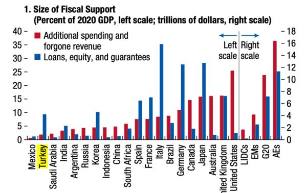 Kaynak: IMF