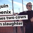 Joaquin Phoenix RESCUES two cows from slaughter after Academy Awards