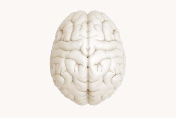 Breakthrough for flexible electrode implants in the brain