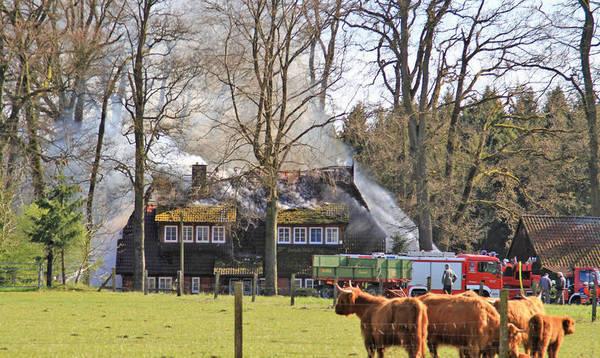 Polizei ermittelt wegen Brandstiftung - Heidekreis - Walsroder Zeitung