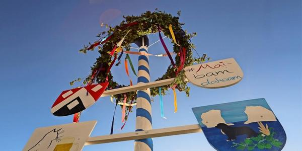 Augustustburg: Unbekannte stehlen neun Meter hohen Maibaum