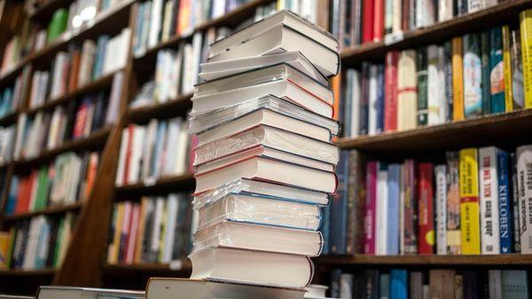 Diese Bücher erklären uns die Corona-Krise
