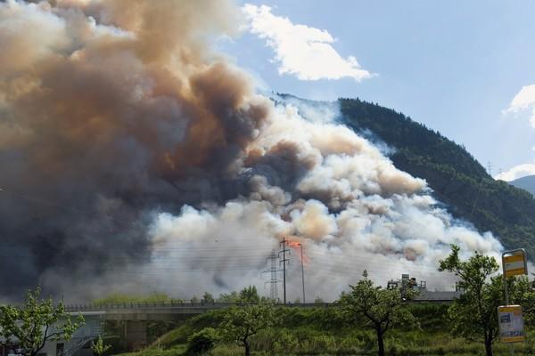 10e anniversaire de l'incendie de forêt à Viège - Les mesures de protection ont fait leurs preuves et la forêt se remet