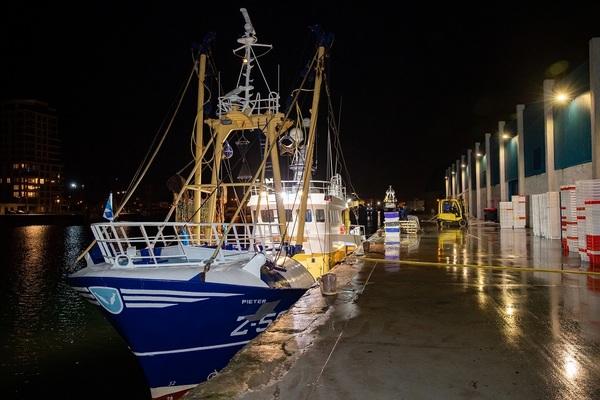 En 20 ans, les pêcheurs flamands n'ont jamais gagné aussi peu. - Vlaamse vissers haalden in 20 jaar nooit zo weinig op