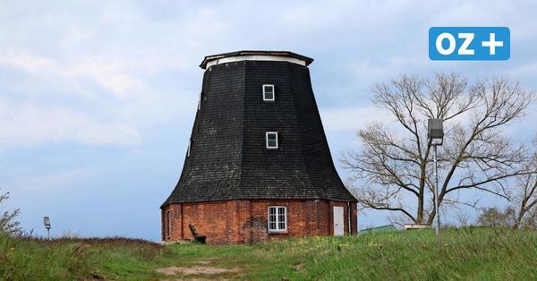 Windmühle in Stove ohne Kopf: So teuer ist die Reparatur der Schäden