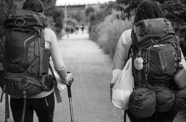 Camino de Santiago: consejos y guía de rutas y etapas